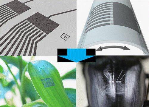 Углеродная электроника