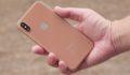 Комиссия по связи США подтвердила существание iPhone X в цвете Blush Gold